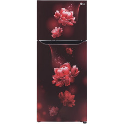 LG 260 L Frost Free Double Door 3 Star (2020) Convertible Refrigerator(Scarlet Charm, GL-T292SSC3)