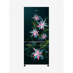 Haier 256 L Frost Free Double Door Bottom Mount 3 Star Refrigerator(Green Tropical, HRB-2764CGT-E)